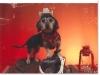 slideshow-dachshunds-03